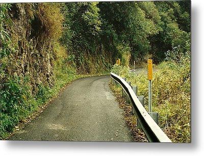 Maui Highway Metal Print by Marilyn Wilson