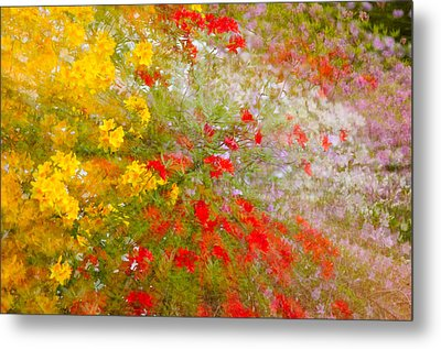 May Impression Metal Print by Bobbie Climer