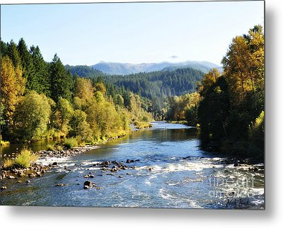 Mckenzie River  Metal Print by Mindy Bench