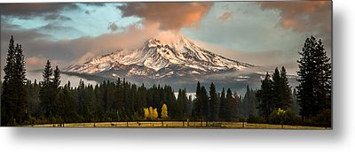 Metal Print featuring the photograph Meadow Views by Randy Wood