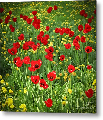 Meadow With Tulips Metal Print
