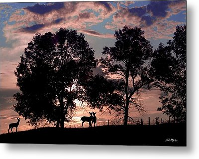 Meeting In The Sunset Metal Print by Bill Stephens