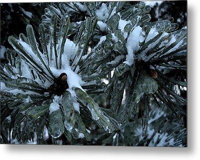 Memories In Ice Metal Print by Yvonne Scott