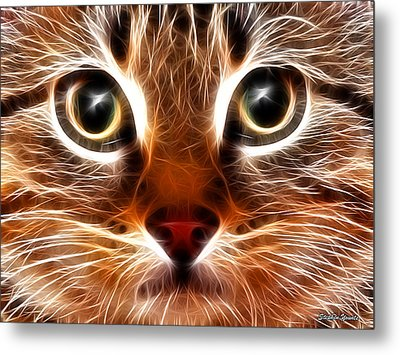Meow Metal Print by Stephen Younts
