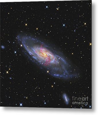 Messier 106, A Spiral Galaxy With An Metal Print by R Jay GaBany