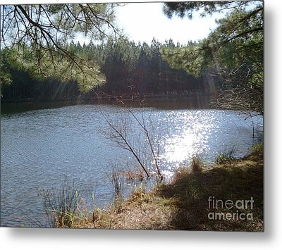Midday Sun Rays Metal Print by Cindy Hudson