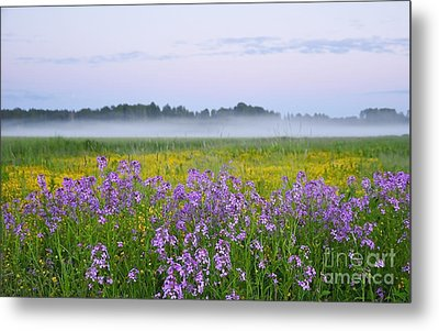 Midnight Light With Flowers Metal Print by Conny Sjostrom