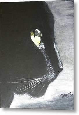 Midnight Prowler Metal Print by Denise Hills