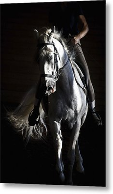 Midnight Ride Metal Print by Wes and Dotty Weber