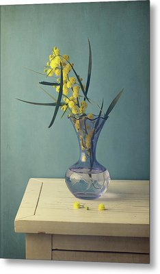 Mimosa Flower In Blue Vase Metal Print by Copyright Anna Nemoy(Xaomena)