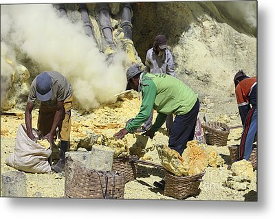 Miners Collecting Lumps Of Sulphur Metal Print by Richard Roscoe