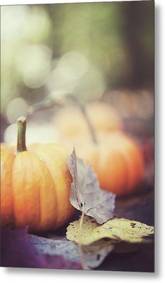 Mini Pumpkins With Leaves Metal Print by Samantha Wesselhoft Photography