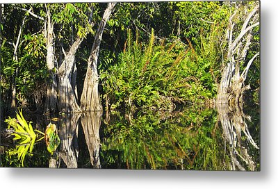Metal Print featuring the photograph Mirror Pond by Anne Mott