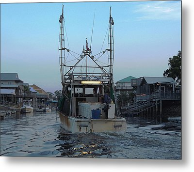 Miss Jerry's Metal Print by Marilyn Holkham
