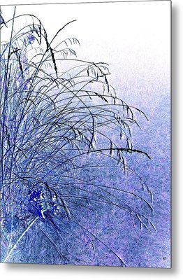 Misty Blue Metal Print by Will Borden