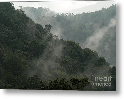 Metal Print featuring the photograph Misty Cloud Forest Matagalpa Nicaragua by John  Mitchell