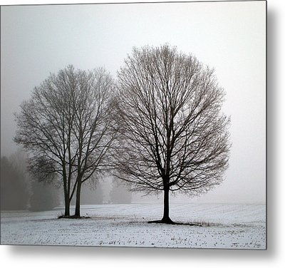 Misty Morning Metal Print by Penny Hunt