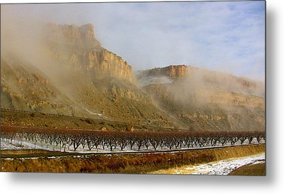 Misty Orchard Sunrise Metal Print