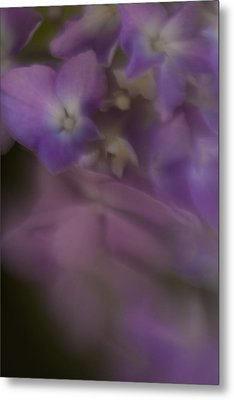 Misty Purple Metal Print