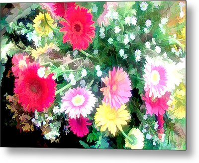 Mixed Asters Metal Print by Elaine Plesser