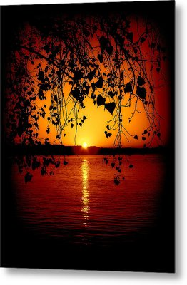 Monitor Bay Metal Print by Jennifer St Pierre
