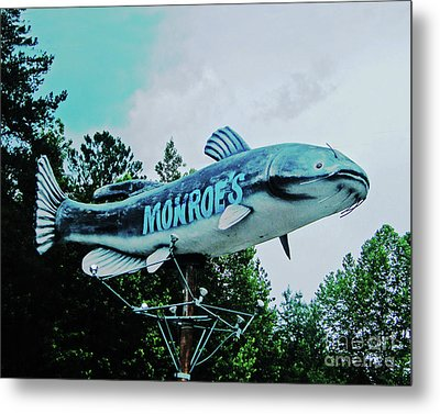 Monroe's Catfish  Metal Print by Lizi Beard-Ward