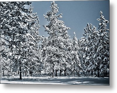Metal Print featuring the photograph Montana Christmas by Janie Johnson