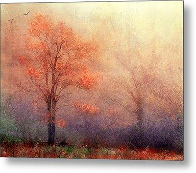 Moods Of Autumn Metal Print by Darren Fisher