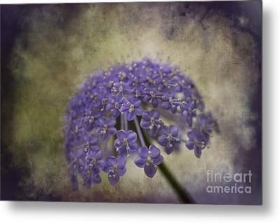 Metal Print featuring the photograph Moody Blue by Clare Bambers