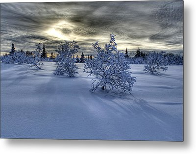 Metal Print featuring the photograph Moody Snow Scene by Michele Cornelius