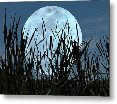Moon And Marsh Metal Print
