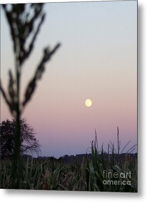 Metal Print featuring the photograph Moon by Andrea Anderegg