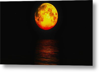 Moon Glow Metal Print by J Riley Johnson