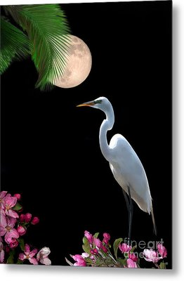Moon Over Florida Metal Print by Betty LaRue