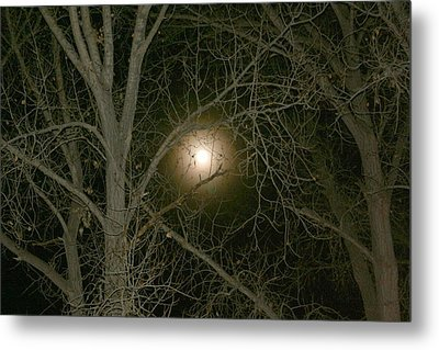 Metal Print featuring the photograph Moon Through The Trees by Laurel Talabere