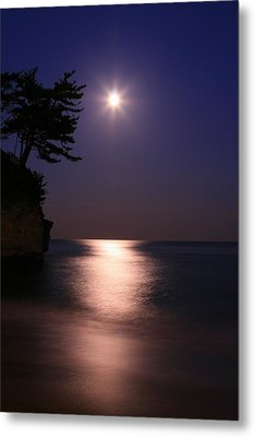 Moonlight (cormorant Point) Metal Print by Copyright Crezalyn Nerona Uratsuji