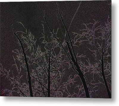 Moonlight I Metal Print