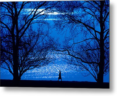 Metal Print featuring the photograph Moonlight Stroll by Mike Flynn