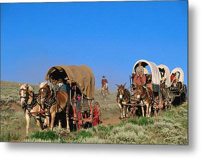 Mormons On Horse Carriages, Mormon Pioneer Wagon Train To Utah, Near South Pass, Wyoming, United States Of America, North America Metal Print by Holger Leue
