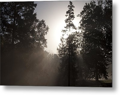 Morning At Valley Forge Metal Print by Bill Cannon