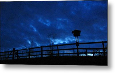 Morning Blues Metal Print by Deb Martin-Webster