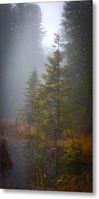 Morning Fall Colors Metal Print by Mike Reid