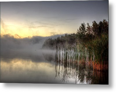 Morning Fog With A Loon Metal Print by Gary Smith