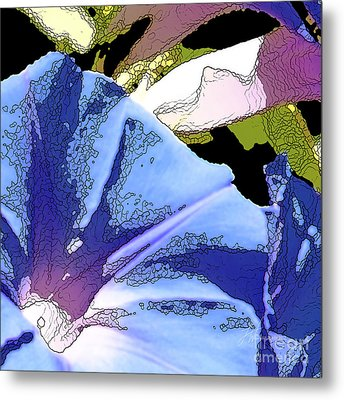 Morning Glory Metal Print by Artist and Photographer Laura Wrede