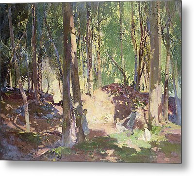 Morning In The Woods Metal Print by Harry Watson