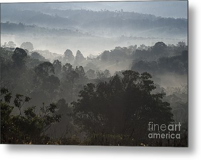 Morning Mist In Panama's Highlands Metal Print by Heiko Koehrer-Wagner