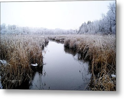 Metal Print featuring the photograph Morning Rime by Steven Clipperton