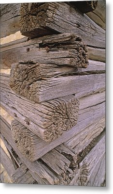 Morticed Joints On An Abandonded Log Metal Print by Gordon Wiltsie