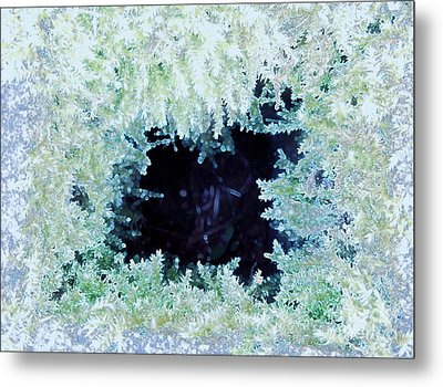 Metal Print featuring the photograph Moss Geode by Renee Trenholm