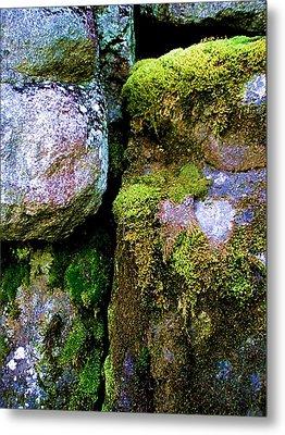 Moss On Rocks Metal Print